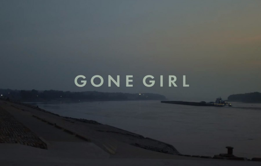 Gone Girl: The Movie that Raised the Bar