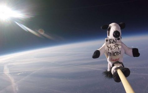 The Chick Fil A Cow reached altitudes of nearly 90,000 feet before landing in northern North Carolina