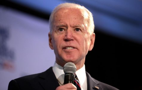 Biden's VP Pick: 6 Possibilities