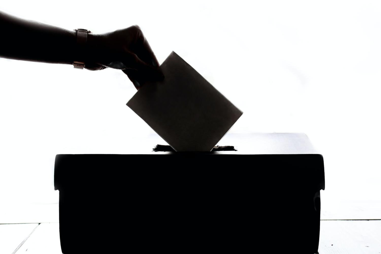 Purple States: Savior of Democracy or Legislative Roadblock?